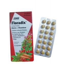 SALUS Floradix Iron +...