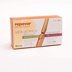 REPAVAR Revitalizing...